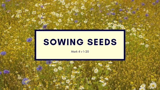 Mark 4:1-20 Sowing Seeds
